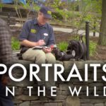 "Instructional Video ""Portraits in the Wild"" by James Gurney"